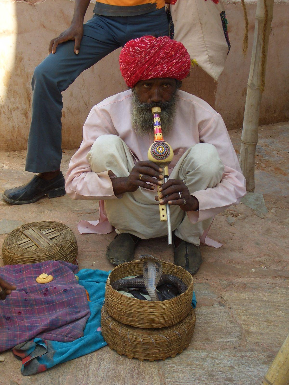 Schlangenbeschwörer, Heiliger in Indien mit Kobra schlange