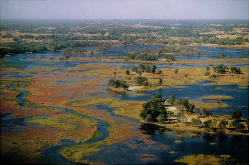 Okavango Delta Luftaufnahme