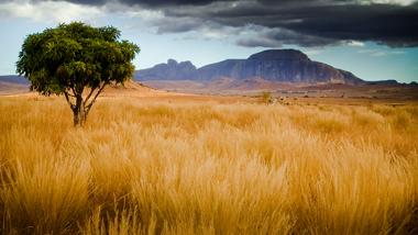 Landschaft Madagaskar, Isalo Nationalpark, Afrika Savanne